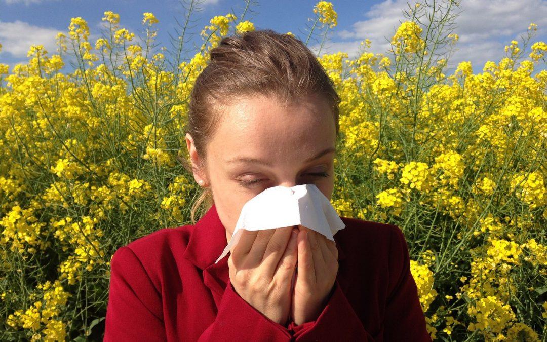 Matratzen für Allergiker